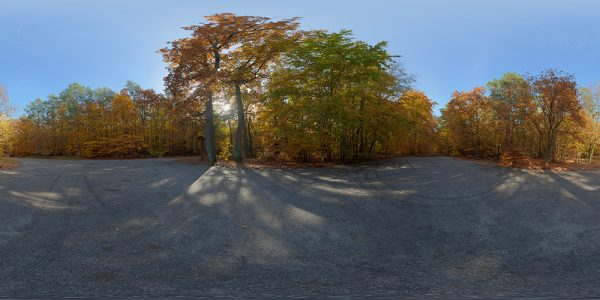 autumn hdri map
