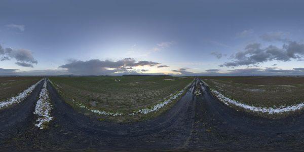 winter field hdri dawn