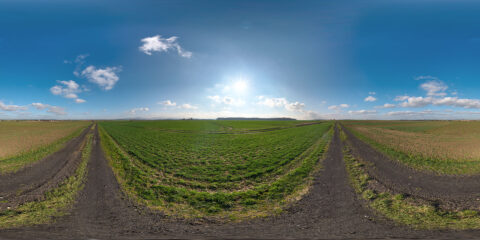 clear sky hdri map at field