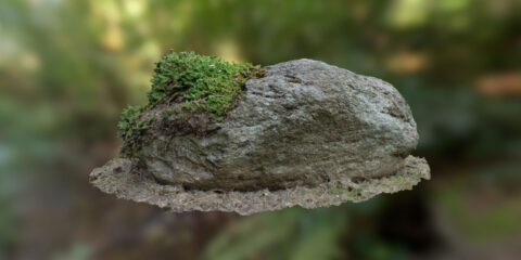 download free 3d scanned mossy stone