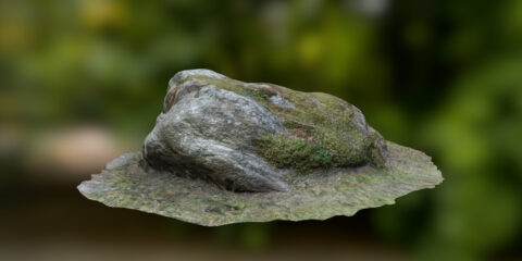 free mossy stone scan
